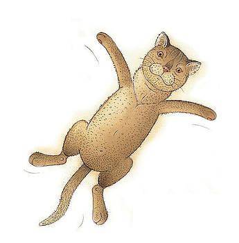 Kestutis Kasparavicius - Flying Cat02