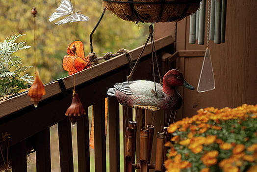 Flying Duck, Balcony Garden, Hunter Hill, Hagerstown, Maryland,  by James Oppenheim