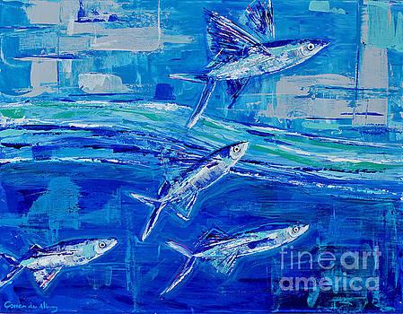 Flying Fish by Paola Correa de Albury