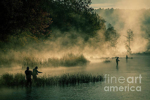 Flying Fishing in the Mist by Iris Greenwell