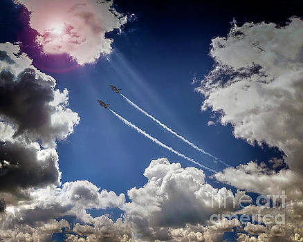Flying High by Edmund Nagele