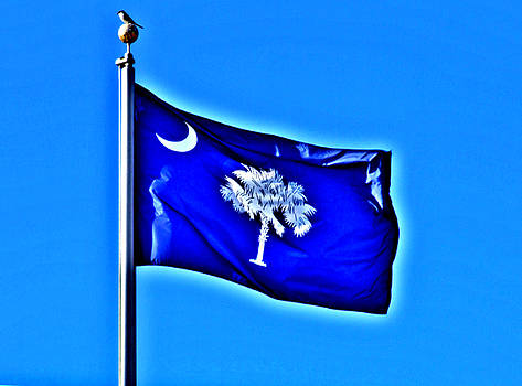 Flying High In The Carolina Blue Sky by Joey OConnor