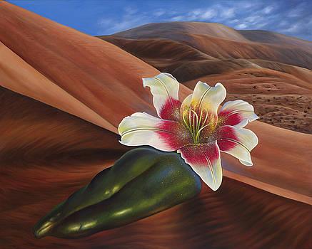 Desert Revival by Birgit Seeger-Brooks