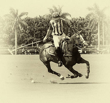 Flying Polo Pony by Michael Gora