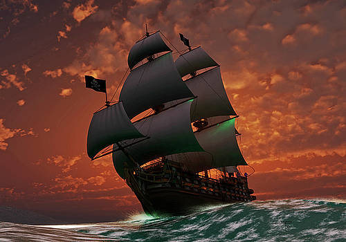 Flying the Jolly Roger by Steven Palmer