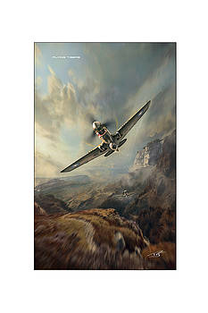 Flying Tigers XXL by Peter Van Stigt