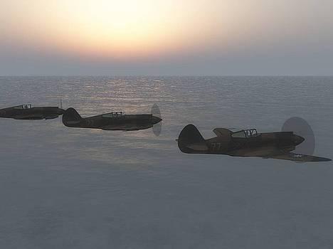 Flying To War by Chris Bird