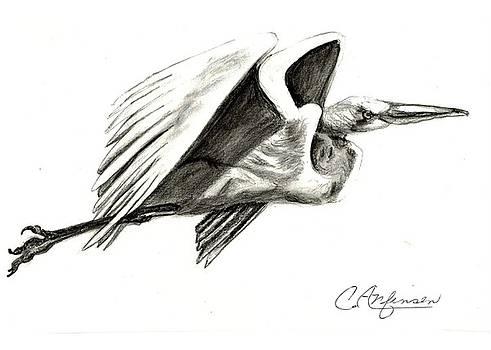 Flying your way by Carol Allen Anfinsen