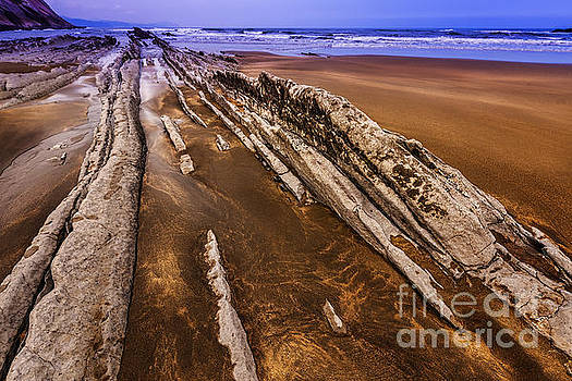 Flysch Rocks by Tony Priestley