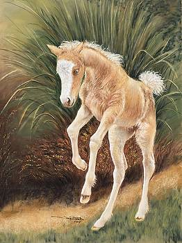 Foaling Around by Tonya Butcher