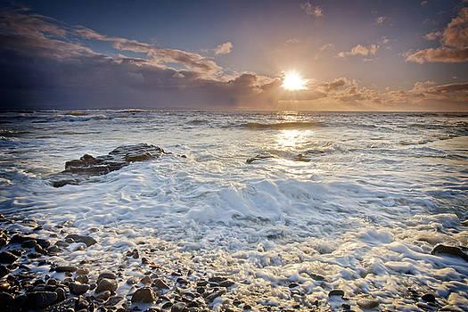 Dominick Moloney - Foam waves