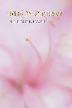 Focus On Your Dream by Ramona Murdock