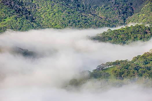 Marc Crumpler - fog between hills