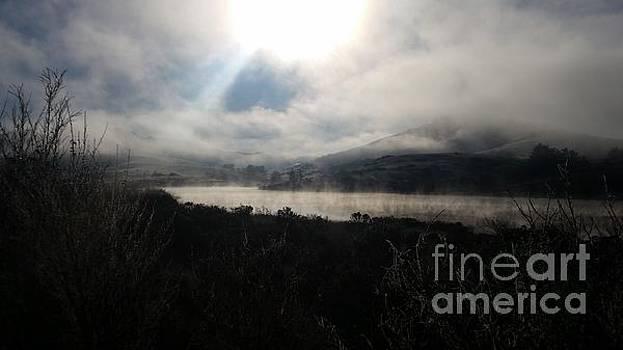 Beatrice Cox - Morning Fog Burnoff