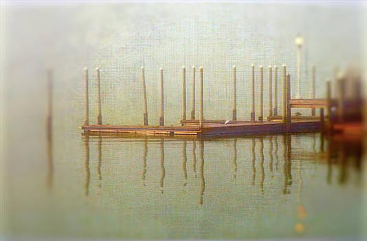 Fog docking  by Eagle Finegan