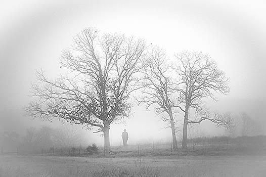 Fog by EG Kight