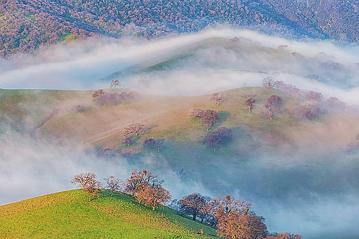 Marc Crumpler - Fog Flowing Over East Bay Hills