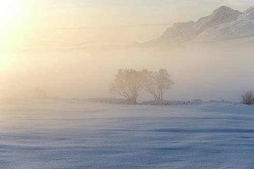 Fog In Lofoten 3 by Dubi Roman
