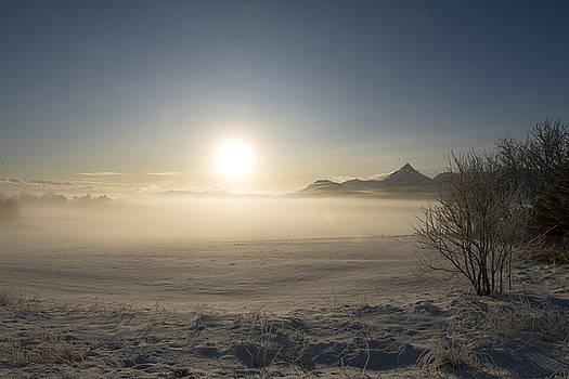 Fog in Lofoten 1 by Dubi Roman