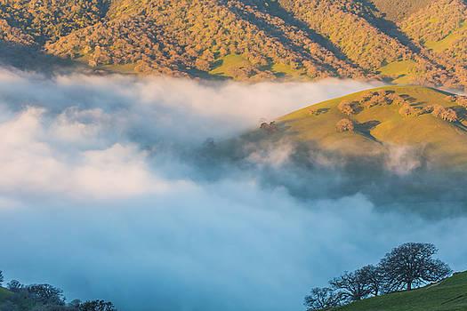 Marc Crumpler - fog in  round valley