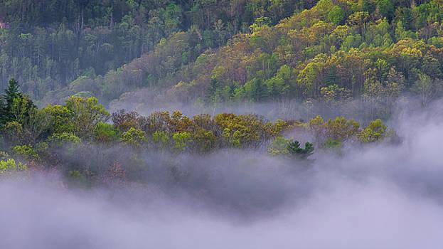 Fog in the hills by Ulrich Burkhalter
