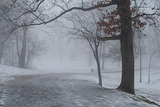 Rich Sirko - Fog in the Park