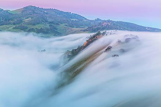 Marc Crumpler - Fog Movement at Sunrise
