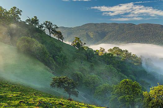 Marc Crumpler - fog on hills