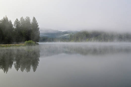 Fog on Lake Selmac by David Crockett