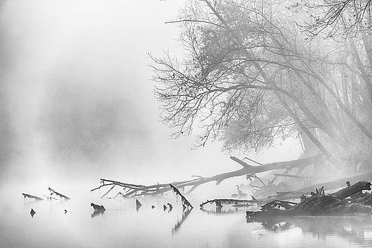 Fog on the Caney Fork by David Morel