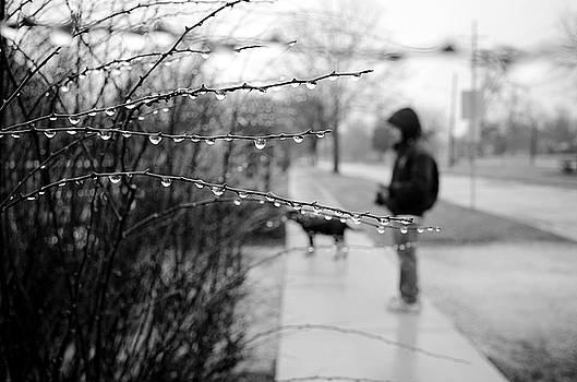 Fog Rain by Jeanette O'Toole