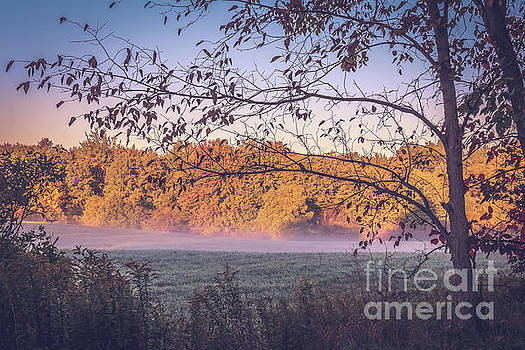 Fog rising in the meadow by Claudia M Photography