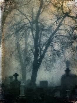Gothicrow Images - Fog Rolled Over The Graveyard