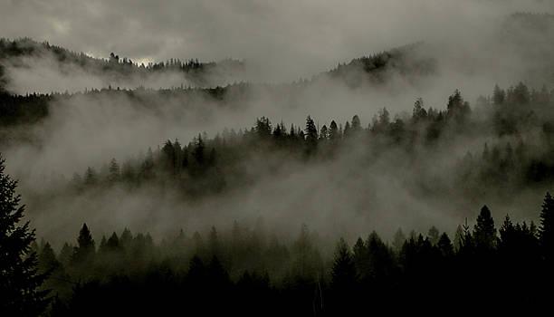 Fog Rolling Through Mountains by Chaznik Raab