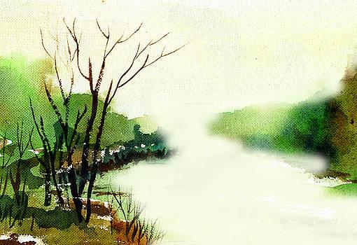 Fog1 by Anil Nene
