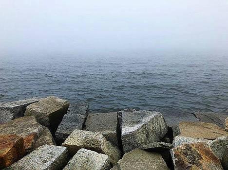 Foggy || #waterscape #rocks #fog #foggy by Megan Bishop