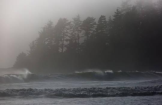 Randy Hall - Foggy Beach