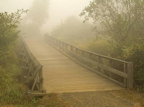 Foggy Bridge by Andrew Kazmierski
