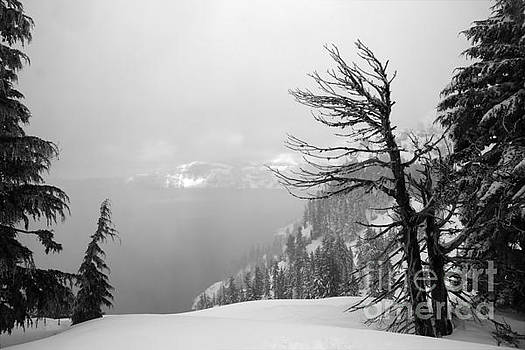 Adam Jewell - Foggy Crater Black And White