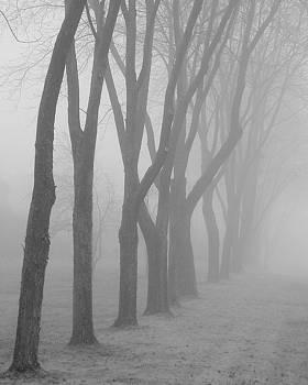 David April - Foggy Day