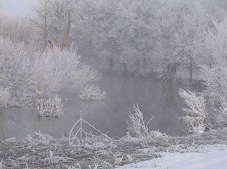 Foggy Day by Krista Barth