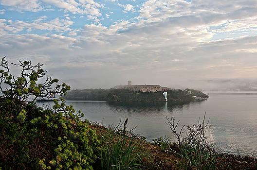Pedro Cardona Llambias - Foggy days in bloody island 1