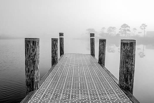 Foggy Dock in Alabama  by John McGraw