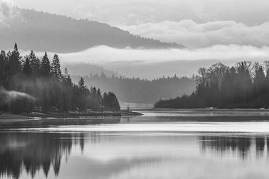 Foggy Dreamscape BW by Joy McAdams
