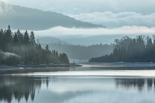 Foggy Dreamscape by Joy McAdams