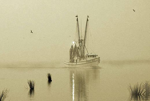 Foggy Evening Catch by Deborah Smith