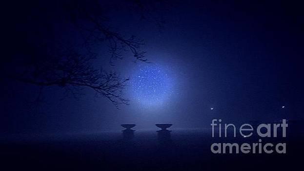 Jenny Revitz Soper - Foggy Evening in the Park