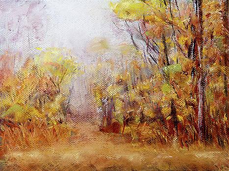 Foggy Fall Morning by Barry Jones