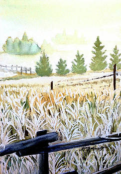 Foggy Field by Tracy Rose Moyers