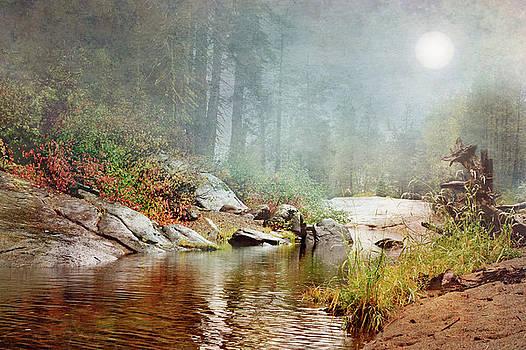 Foggy Fishin Hole by Ramona Murdock
